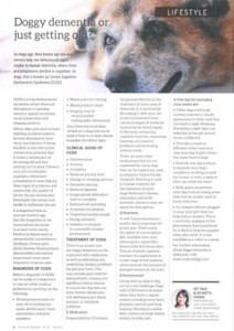 Dog Dementia Article
