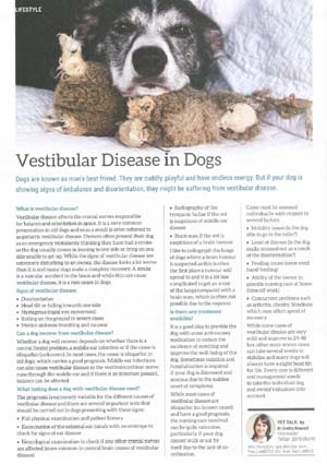 Vestibular Disease Article